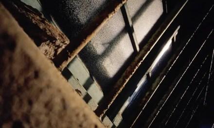 Blackout – Kodak EKTACHROME 100VS – E100VS (35mm)