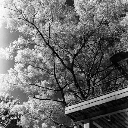 Black lightning - Rollei Infrared 400 shot at ISO6. Black and white negative in 120 format shot as 6x6. R72 infrared filter.