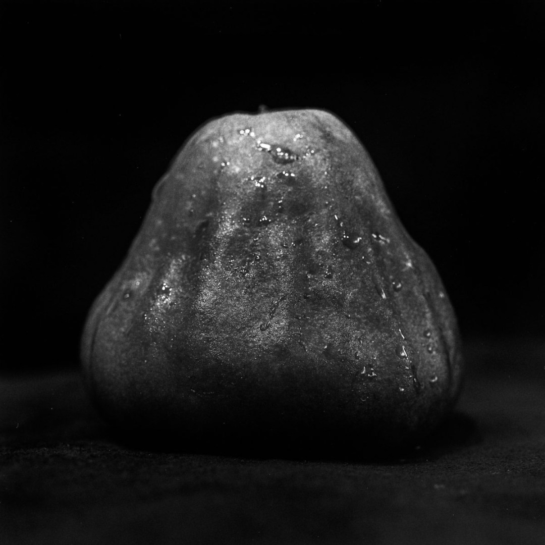 Wax apple light study #01 - Ilford Pan F Plus shot at EI 50. Black and white negative film in 120 format shot as 6x6. 32E extension tube.