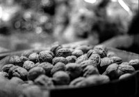 Nuts to it all - Rollei RPX400 shot at ISO800. Black and white negative film in 120 format shot as 6x6.