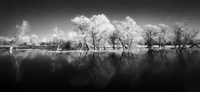 Reflections, Narew River - Mamiya 7ii - Efke Aura 820