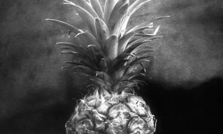 Pineapple light study #02 – Shanghai GP3 100