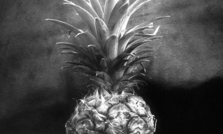 Pineapple light study #02 – Shanghai GP3 100