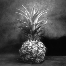 Pineapple light study #02 - Shanghai GP3 100 shot at EI 400. Black and white negative film in 120 format shot as 6x6.