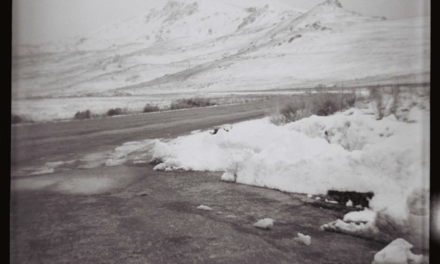 Travelogue: Antelope Island State Park with the Ferrania Rondine box camera