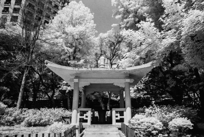Week 15 2016 – Rollei Infrared 400 - (35mm) EI 400 - R72 Filter