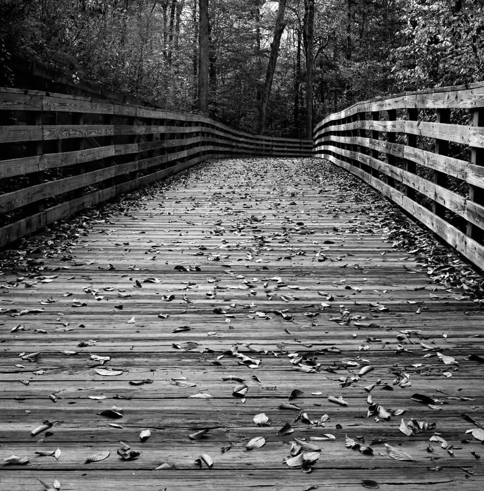 Falls Trail - Bobby Kulik