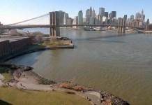 BKLYN Bridge - Robert Marsters