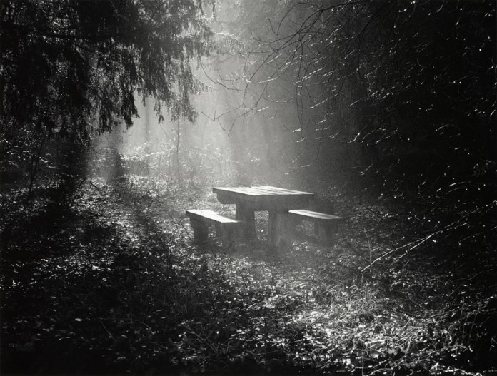 Marbury Bench 2007 - Ilford XP2 - Canon EOS 5 - Neil Hibbs, Harman Technology Lab and Technical Manager