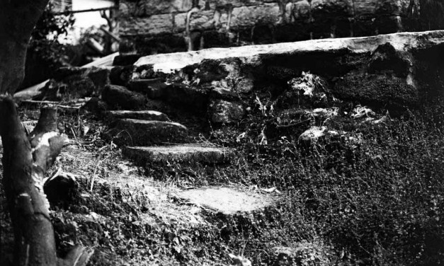Stagnant staircase – Ilford Pan F+ (120)