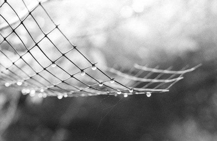 Rain Lanterns, HP5+ 320, Canon EOS 300, 2016