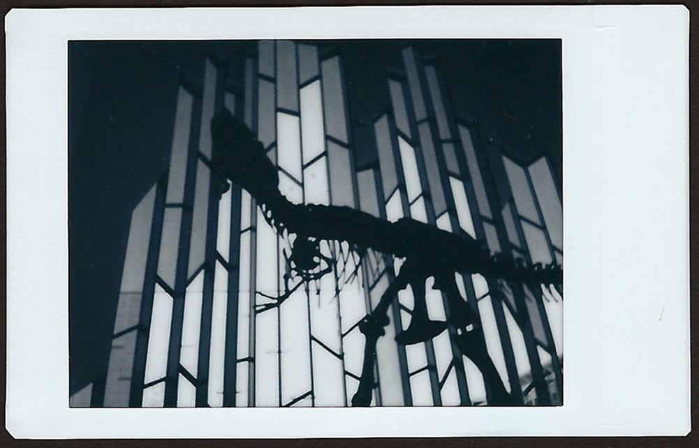 Photographer: Leslie Adams Title: Night at the Museum Location: Overland Park, Kansas, USA Camera: Fuji Mini 90 NEO CLASSIC