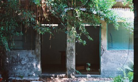Vacated – Lomography Color Negative 400 (120)