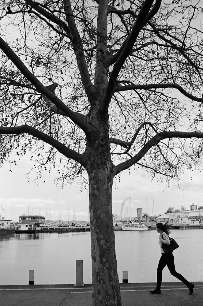 Hobart Waterfront - Nikon F3, Fujifilm Acros 100