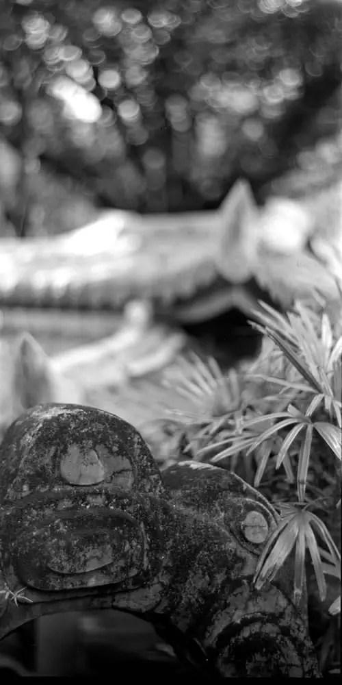 "Arched - Fomapan 200 Creative shot at EI 200. Black and white negative film in 4x5 format. Kodak Aero Ektar 7"" (178mm) f/2.5 - Graflex Pacemaker Speed Graphic."