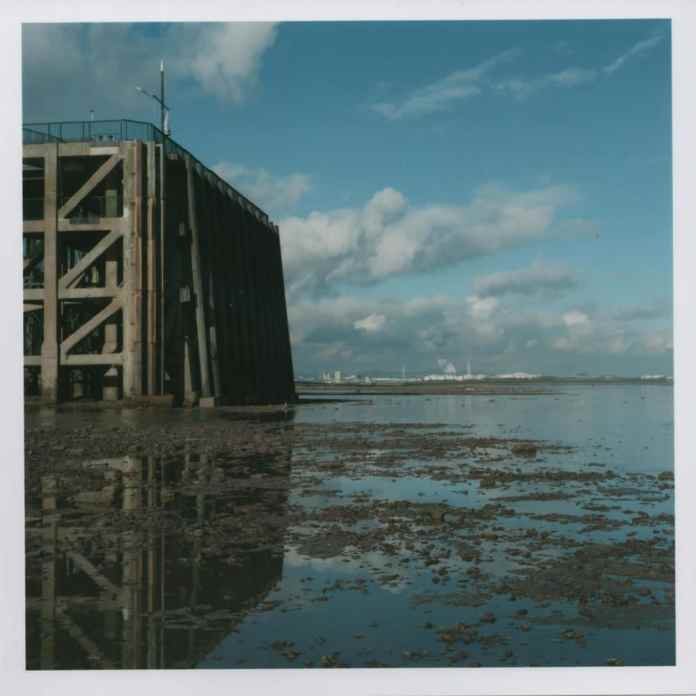 Yashica D - Low Tide