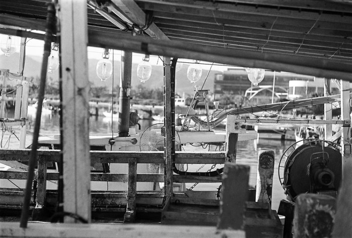 Squidding - Shot on ILFORD Pan F+ at EI 50. Black and white negative film in 35mm format.