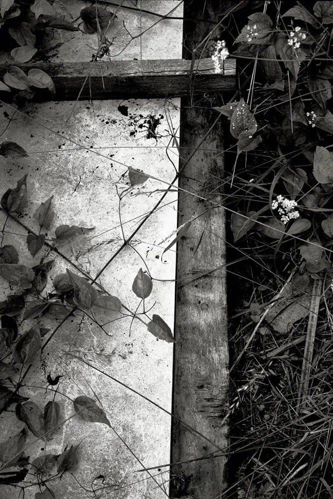 "Paris, France 2007 - From the photo-work ""Restes humains"" - Nikon F4. Kodak Tri-X 135, 400asa"