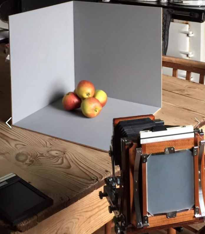 Nagaoka Seisakusho 4x5 - Framing apples