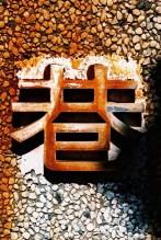 港 / gǎng / port - Shot on Kodak PROFESSIONAL ELITE Chrome 100 (EB-3) at EI 100. Color reversal (slide) film in 35mm format. Cross processed.