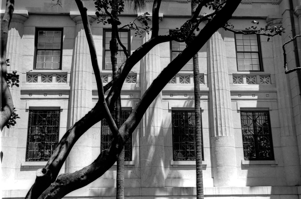 Pillars of society - Shot on FILM Ferrania P30 Alpha at EI 80. Black and white negative film in 35mm format.