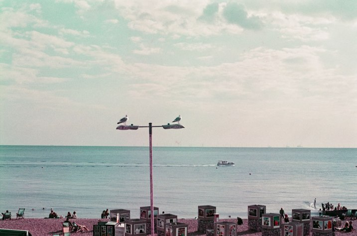 5 Frames 03 - Sandeep Sumal - Lomography new Lomochrome Purple XR 100-400 - Nikon F6 01