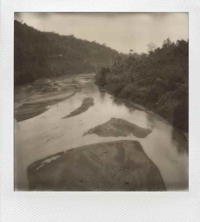 """""""Untitled"""", Taman Negara jungle, Malaysia. Impossible 600 film in Polaroid SX70 (with exposure filter and compensation)."""