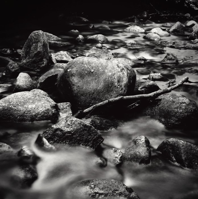"""Untitled"""", Berembun rainforest, Malaysia. Mamiya 6 75mm f/3.5G loaded with Adox CMS20 II, exposed at EI 12, stand developed in Adox Rodinal 1:100."""