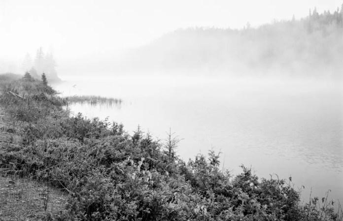 Fog, Wawa Linhof Technika V Ilford HP5+