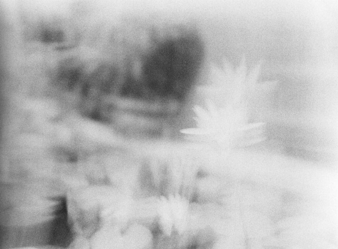 4x - Shot on ILFORD HP5 PLUS at EI 1000. Black and white negative film in 120 format shot as 6x4.5. Push processed 1+1/3 stops.