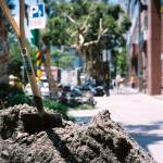 Call a spade a spade - Shot on Kodak Portra 400 at EI 400. Color negative film in 35mm format.