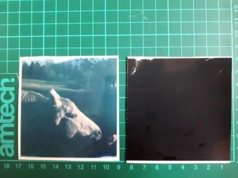Tutorial step 1: Separated Polaroid sheet