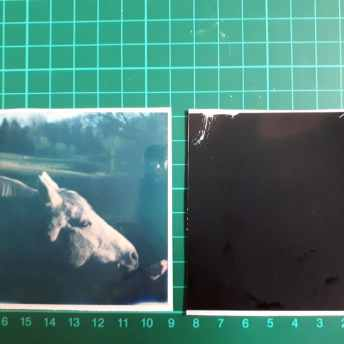 Tutorial step 1: Separated Polaroid sheet