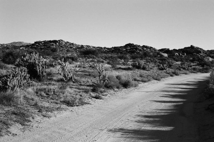Road Bend - ILFORD Delta 100 Professional (0)