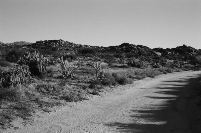 Road Bend - ILFORD Delta 100 Professional (-)