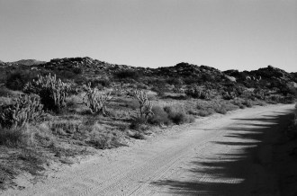 Road Bend - Kodak T-MAX 100 (+)