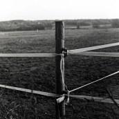 Yashica Mat-124, Kodak T-MAX 100, EI 100, Ilford DDX 1:4