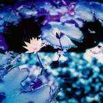 In a sea of oil - Shot on Lomography Lomochrome Purple XR 100-400 at EI 400. Color negative film in 35mm format.