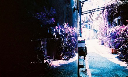 Mirror finish – Shot on Lomography Lomochrome Purple XR 100-400 at EI 400 (35mm format)