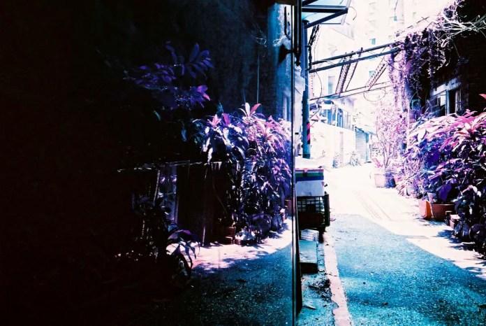 Mirror finish - Shot on Lomography Lomochrome Purple XR 100-400 at EI 400. Color negative film in 35mm format.
