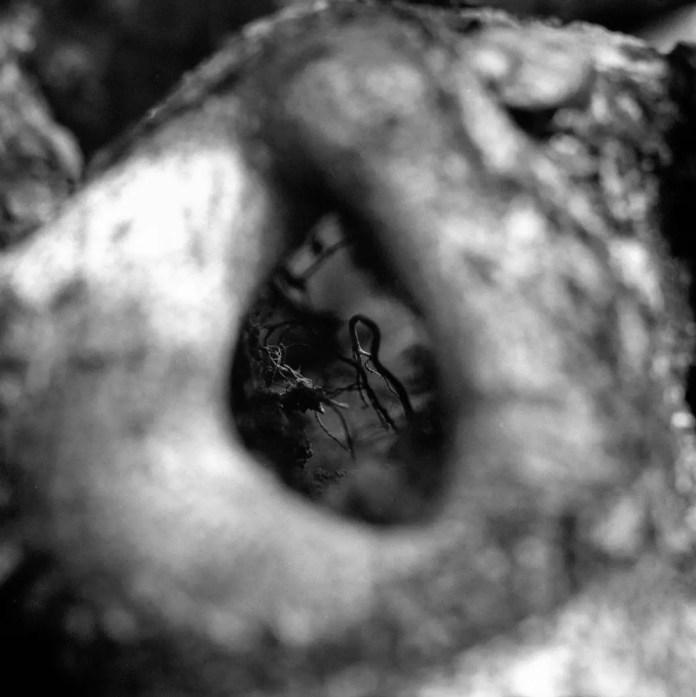 Transition 01 - Shot on Rollei Superpan 200 at EI 200. Black and white negative film shot as 6x6. Hasselblad 2000 + Kodak Aero Ektar 178mm f/2.5.