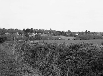 Looking across fields to Wilby village Northamptonshire - ILFORD XP2 Super (C-41 processing by Skears)