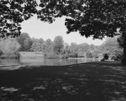 Abington Park - ILFORD XP2 Super (C-41 processing by Skears)