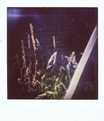 Diana Instant Square - Close-up lens - Grass