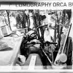 Snuggle buddies – Shot on Lomography Orca 110 at EI 80 (110 format)
