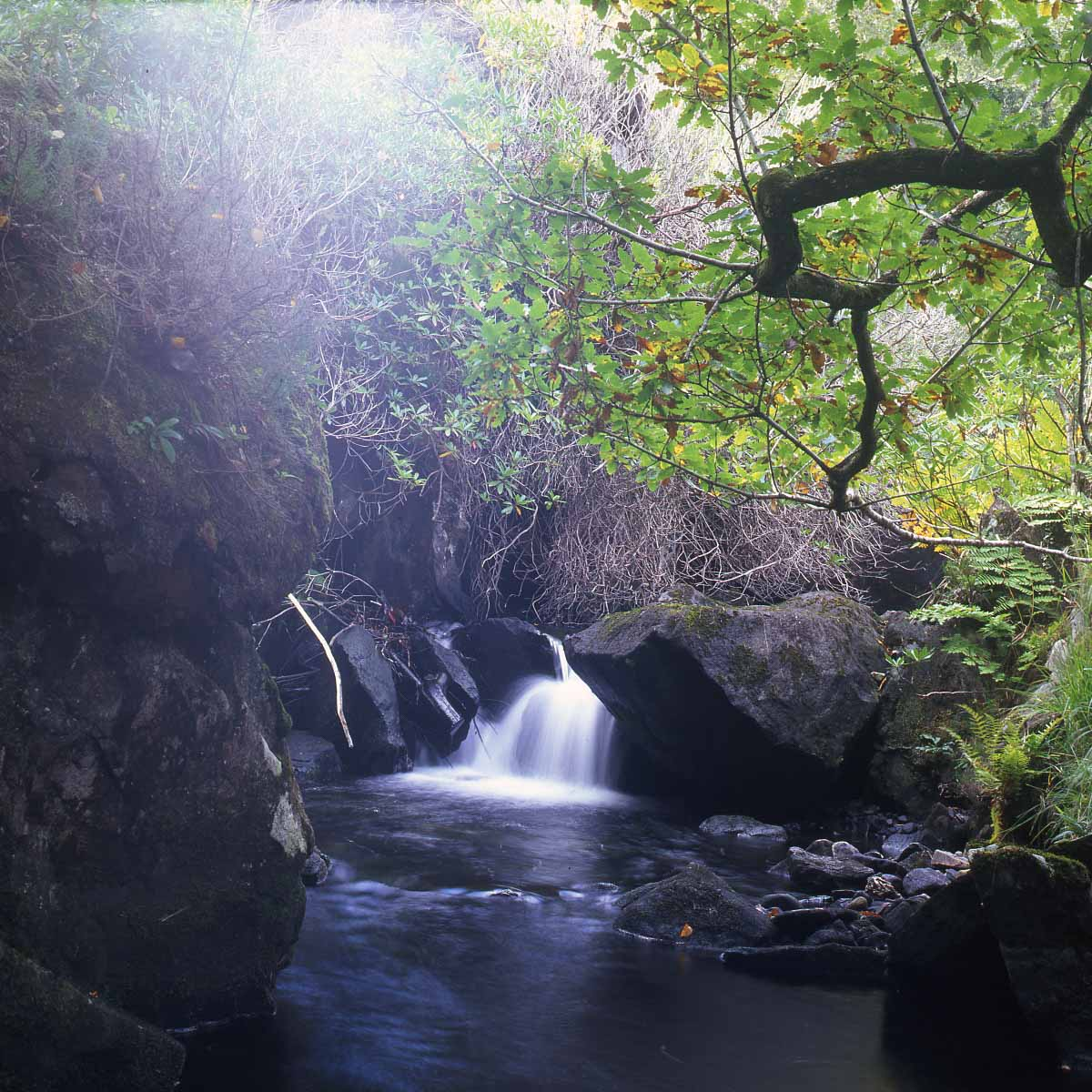 Yashica Mat 124 - Waterfall with Flare, Fuji VELVIA 100 RVP100