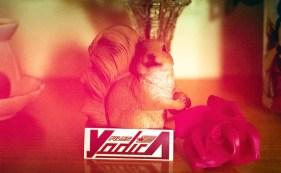 Yodica Andromeda