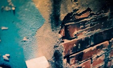 365 textures #09 – Shot on Kodak EKTACHROME 160T (ET160 5077) at EI 160 (35mm format)
