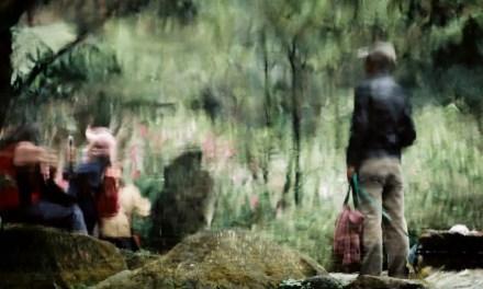 On the edge – Shot on Kodak VISION3 250D 5207 (35mm format)