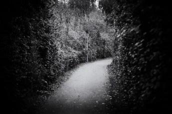 Rob J Davie - Light ahead